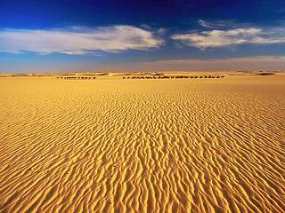 Trump Spanyolországnak: építsetek falat keresztbe a Szaharán!