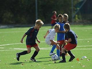 Nagyon kevés a pénz, többet kell adnia az államnak a szombathelyi fociakadémiára