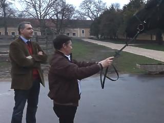 Orbán Lázárra bízta a mezőhegyesi ménesbirtokot