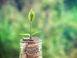 Versenyszféra: 500 milliárd forintot fordítanának beruházásokra