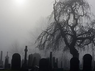Budapesti temetővezetőket menesztettek gazdasági visszaélések miatt
