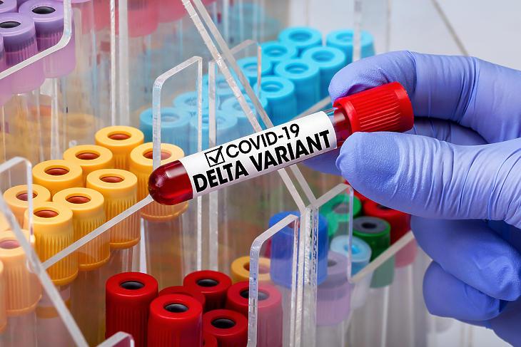 Eddig mindössze öt delta-mutánssal fertőzött beteget regisztráltak Magyarországon. Fotó: Depositphotos