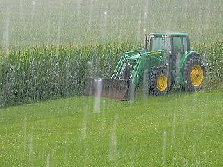 Az aszály után most az eső csinálja ki a termést