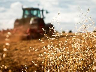 Takarékbank: lépni kell a fogyasztói élelmiszerpazarlás radikális csökkentéséért