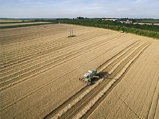 Magára talált idén a mezőgazdaságunk