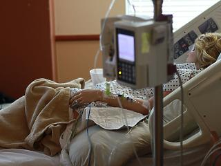 Referendumon döntenek az eutanáziáról Új-Zélandon