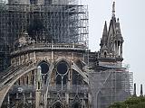 A Notre-Dame-i méhek megmenekültek