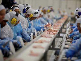 Alaposan meglódult az élelmiszeripar februárban