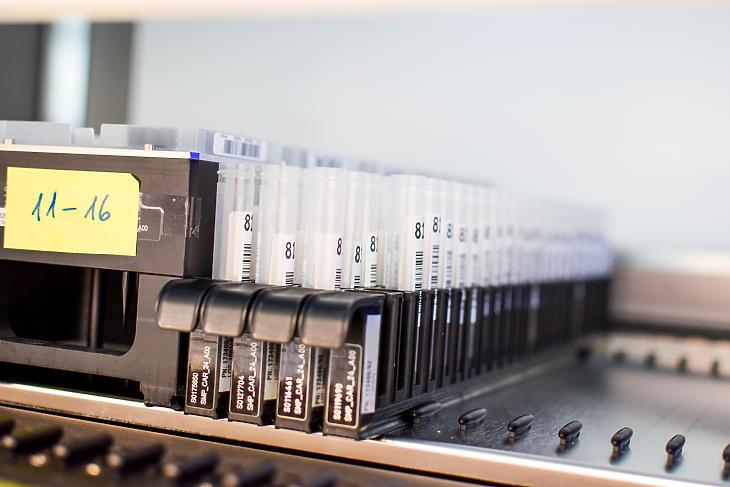 A Synlab elhalasztja a volumenbővítést. Fotó: Synlab