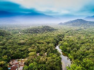 Egy amerikai óriáscég is hasznot húzhat az Amazonas irtásából